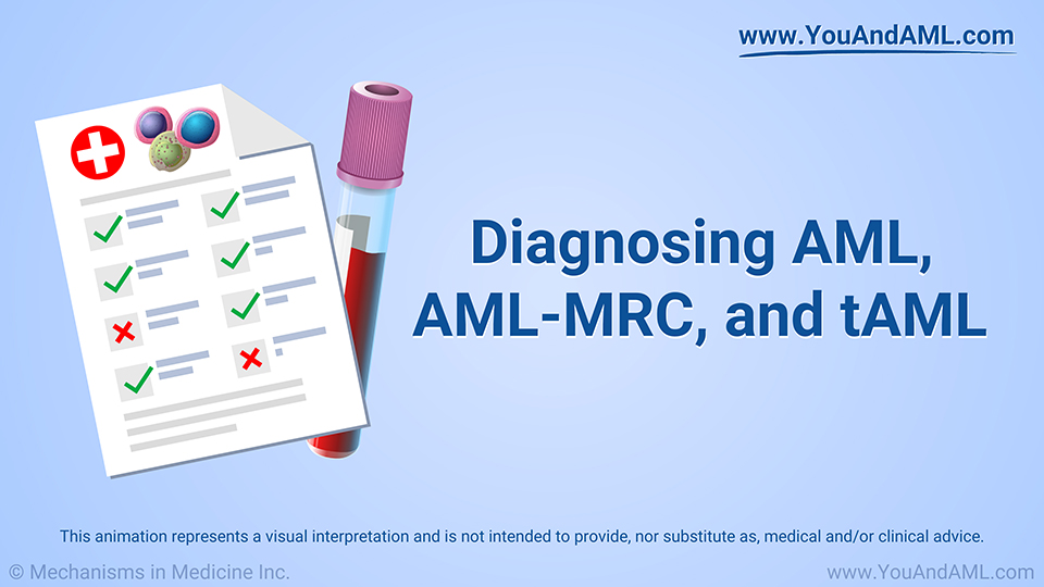 Animation - Diagnosing AML, AML-MRC, and tAML