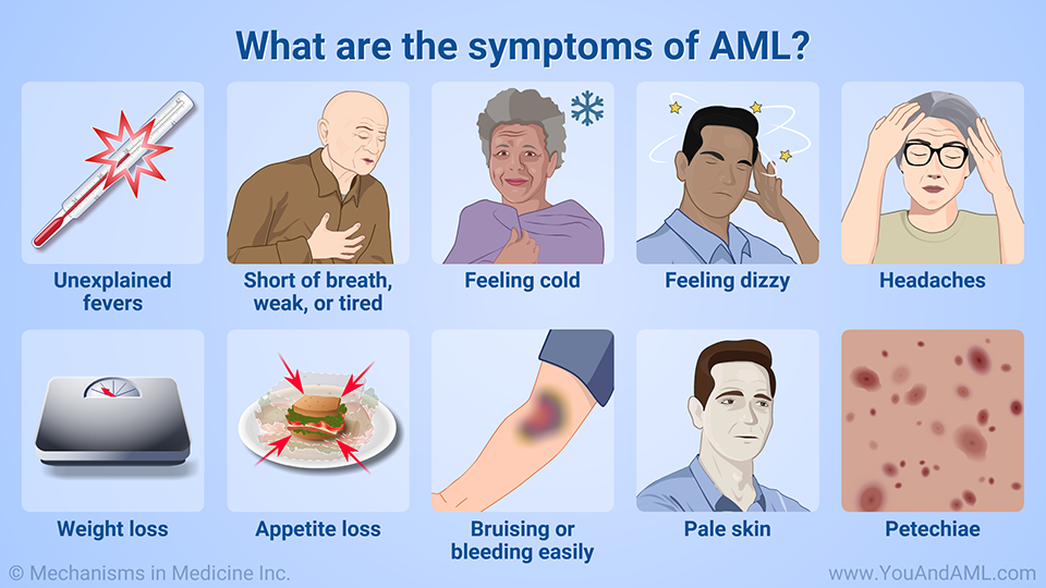 What are the symptoms of AML?